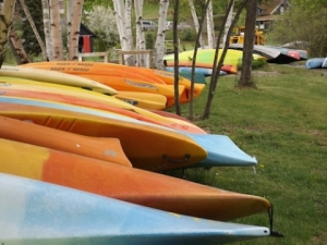Watershed Post - Susan's pleasant pheasant kayaks small_0