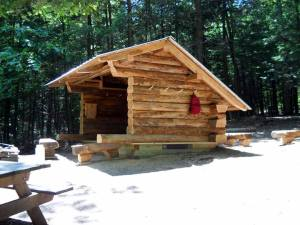 New Chestnut Lean-to in Danby State Forest