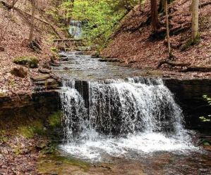A waterfall on Randall Creek is part of the property the Finger Lakes Land Trust plans to buy from the Burns family in Spafford to create hiking trails at the southern end of Skaneateles Lake. (Courtesy Andy Zepp)